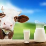 Zamienniki mleka krowiego