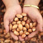Olej arganowy – płynne złoto dla urody