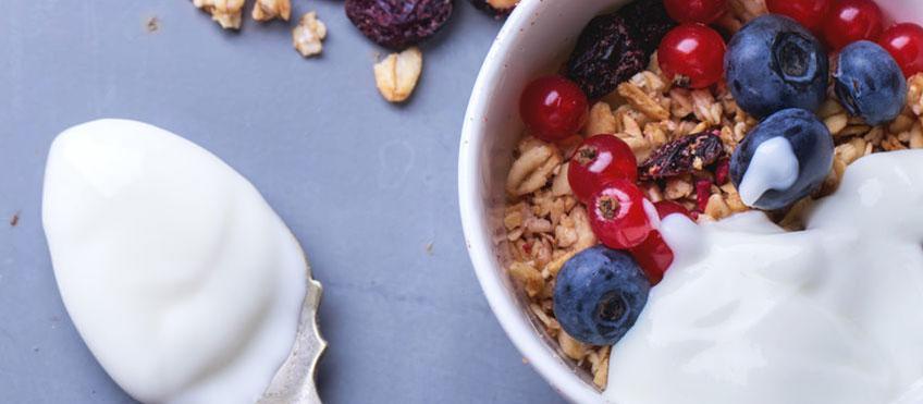 Dieta Jogurtowa Jogurt Na Odchudzanie Greenlife