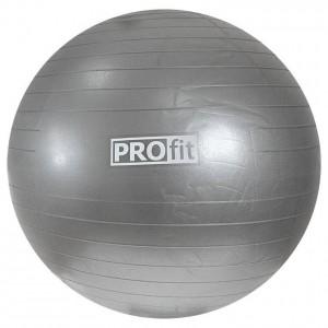 Piłka gimnastyczna PROFIT srebrna
