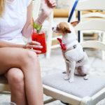 Wiosenny detoks – 5 napojów, które oczyszczą organizm na wiosnę